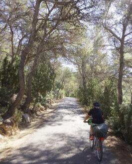 MUTATIS UPDATE…. a few more popping up around Ibiza.